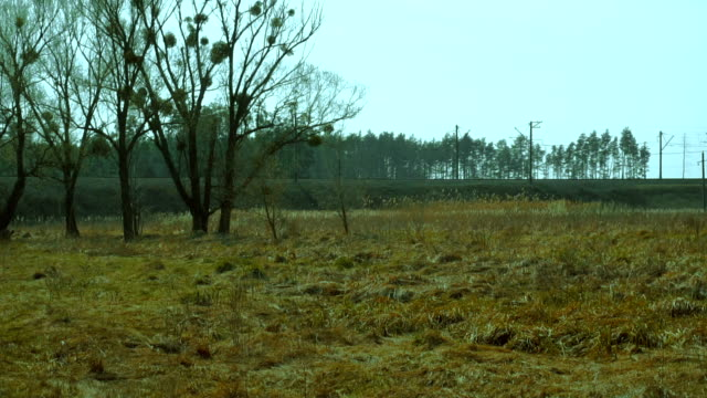 view of the countryside video