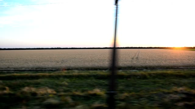 View of the field from the train. video