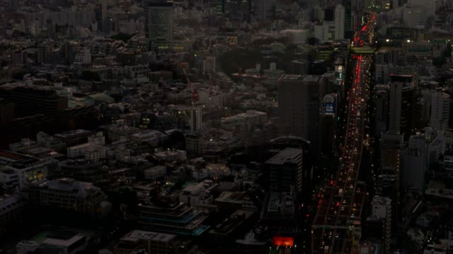 view of Tokyo cityscape at twilight with Mt Fuji on the background video