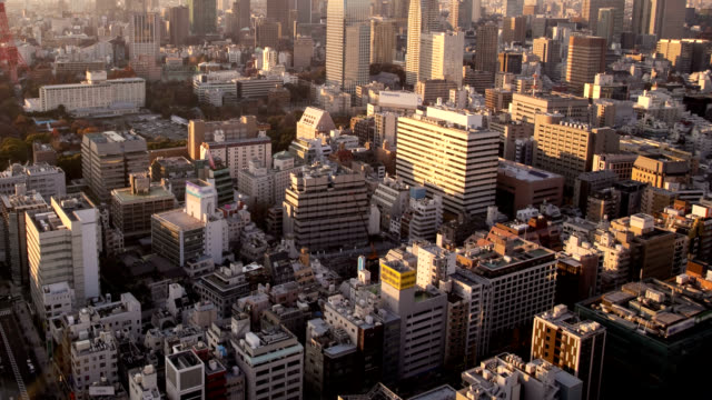 View of Tokyo downtown video