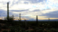 View of twilight in Tucson Mountain Park video