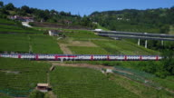 view of vineyards of Lavaux, UNESCO video