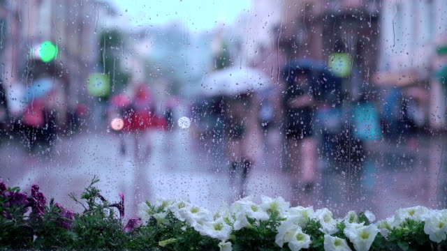 View through the window on rainy day. Raindrops on window glass, people walk on city street in rainy day, blurred silhouettes of people. Concept of shopping, walking, lifestyle, weather, seasons, modern city video