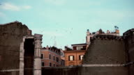 View to the old town ruins and birds on the background. Historical excavation video