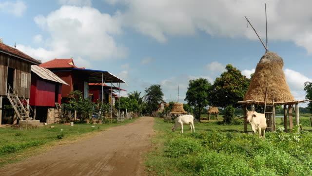 Village houses and haystacks on stilts video