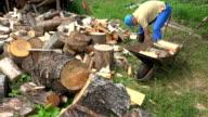 Villager man load chopped wood to rusty wheelbarrow video