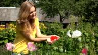 Villager woman hands show poppy flower red bloom hidden in arms. video