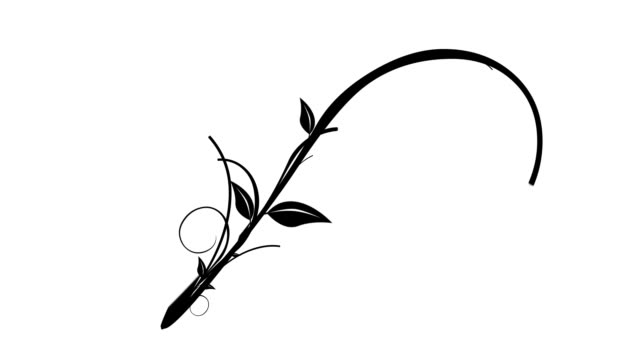 Vines & Leaves Growing (Isolated Flourish) video