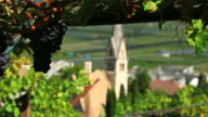 HD Vineyard above old town tracking shot video