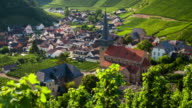 Vineyard and idyllic village - rack focus video