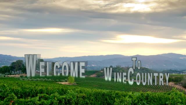 Vineyard Composition #2 video