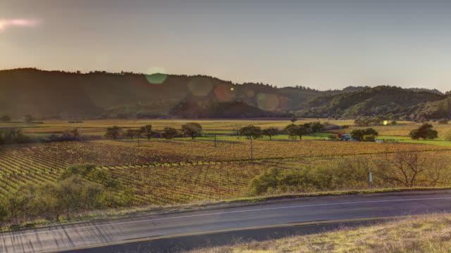 Vineyard Landscape in Napa Valley, California video