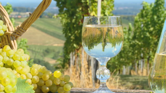 HD DOLLY: Vineyard Reflection In A Glass video