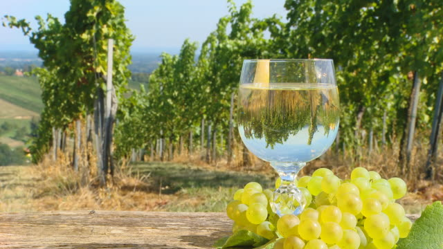 HD DOLLY: Vineyard Scene With Glass Of Wine video