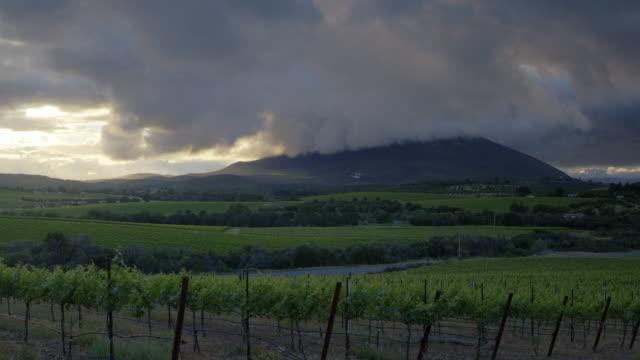Vineyard - Spring Storm Sunset video