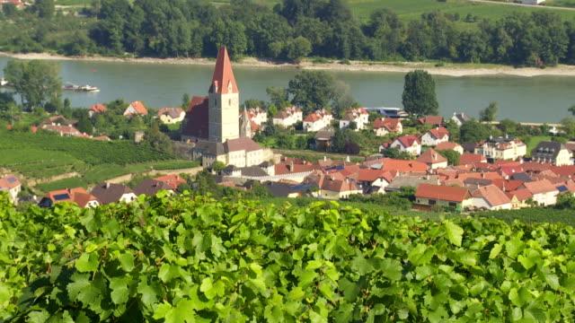 Vineyards Above Weissenkirchen in Danube Valley video