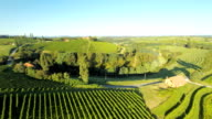 AERIAL Vineyards And Farmhouses video