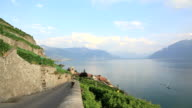 Vineyards Around Lake Leman, Montreux, Switzerland video