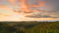 HD TIME LAPSE: Vineyards At Sunset video