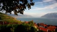 Vineyards of the Lavaux region over lake Leman (lake of Geneva) video