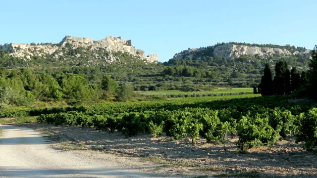 Vineyards, trees and rocks, Baux-de-Provence, Provence, France video