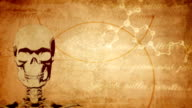 Vintage, ancient medical background with skull video