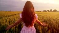 Vintage Fashion Model Walking Wheat Field at Sunset Slow Motion video