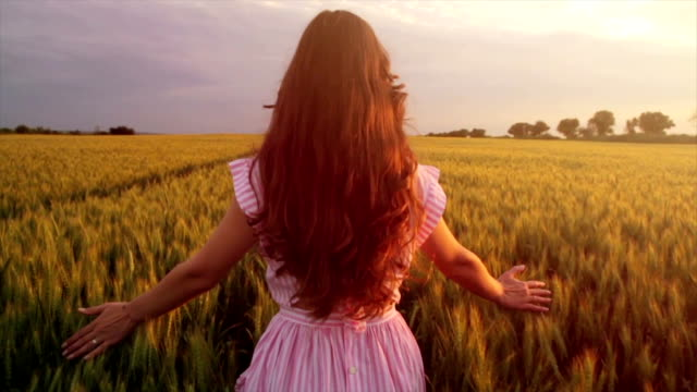 Vintage Fashion Model Walking Wheat Field at Sunset Slow Motion video