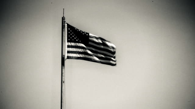Vintage Flag and Pole. video