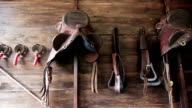 vintage leather saddle horse video
