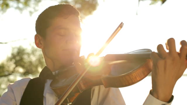 Violinist man play violin on nature at the sunset video