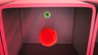 virus inside the cell video