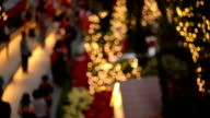 Visitors Strolling in a Garden with Christmas Decoration video