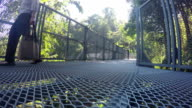 Visitors walk on the Canopy Walkway video