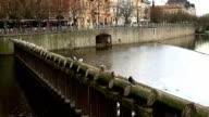 Vltava river in Prague video