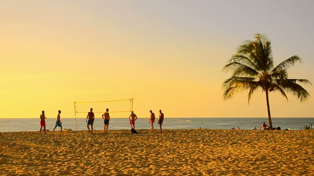 volleyball on sunset beach video