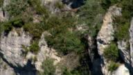 Vulture Flying Alongside Escarprment  - Aerial View - Languedoc-Roussillon, Lozère, Arrondissement de Florac, France video