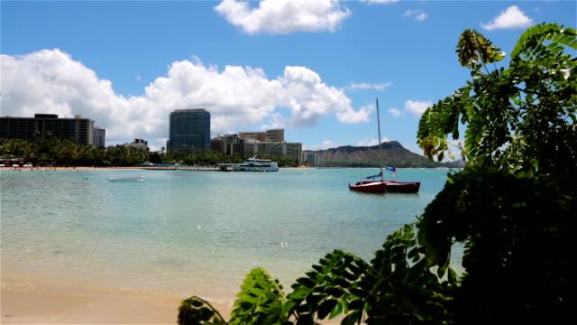 Waikiki Beach, Honolulu, Hawaii video
