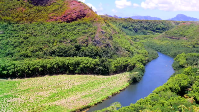 Wailua River in Kauai Hawaii video