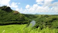 Wailua River State Park Landscape, Kauai, Hawaii video