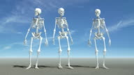 Waiting Skeletons video