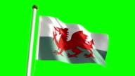 Wales flag (Loop & green screen) video