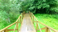 Walk Down via Wooden Stairs with Railing video