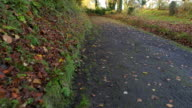 POV:walk in the Autumn countryside road,Northern Ireland video