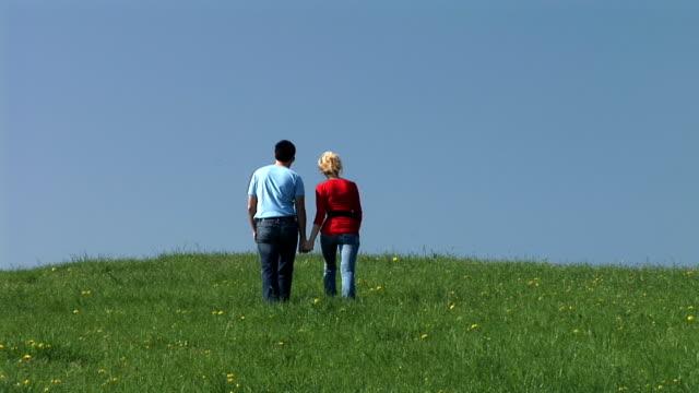 HD: A Walk On Meadow video