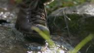 Walk on river video