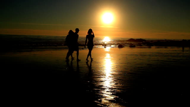 Walk on The Beach at Sunset video