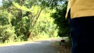 walking at forest video