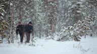Walking in blizzard through the taiga video