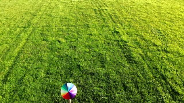 walking in the green fields video